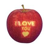 Zseniális: a tanárnő két almán mutatta meg diákjainak, mi az erőszak