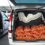 Hamarosan kiderülhet, marad-e a zöldségek horror ára