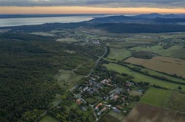 Tiborczék terjeszkednek a Balaton-felvidéken