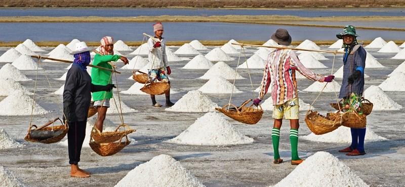 A só nincs elsózva, de a dátumozással baj van