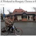 Magyar kisvárost tesztelt véletlenszerűen a New York Times