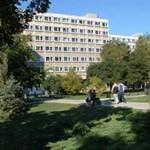 Építész műterem és informatikai fejlesztések a győri egyetemen