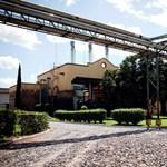 Vonattal látogatható egy különleges tequilaüzem Mexikóban