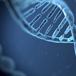 Az Apple karácsonyi ajándéka minden dolgozónak: ingyen megcsináltathatják a genetikai vizsgálatot