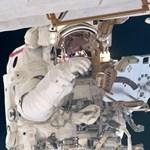 Az űrhajósok nem ehetik meg az uborkát, amit termesztettek