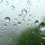 Kevesen tudják: mi az a különleges illat eső után?