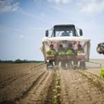 Magyarokat is kizár az állam a földvásárlásból