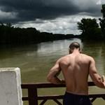 Rekordárvízre készülve lapátol Báta - Nagyítás-fotógaléria