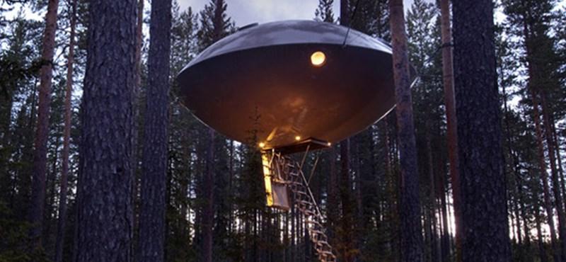UFO landolt a svéd erdőkben?