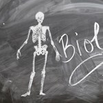 Kifog rajtatok a biológia? Kvíz az érettségiből