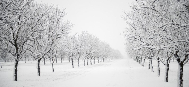 Elektromos rokkantkocsival rekedt a hóban, rendőrök mentették meg