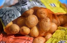 Akciós zöldséget árul a Fidesz Tiszaújvárosban, ahol a hétvégén választás lesz
