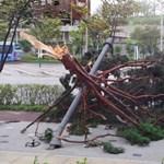 Mindkét Koreát letarolta egy tájfun