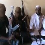 """""""A nyugati oktatás bűn"""" - az evolúciót is tagadja a Boko Haram"""