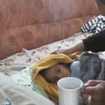 Ez a 3 éves kisfiú túlélt 3 napot egyedül a tajgán - videó