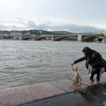 A vártnál is tovább árad a Duna – árvízhírek percről percre