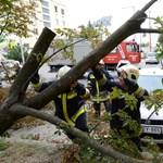 Fákat döntött ki és épületeket rongált meg a tegnapi vihar – videó
