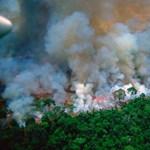 Több mint kétezer embernél okoztak légúti problémákat a brazíliai erdőtüzek