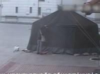 Egy 60 éves harkányi nő szétvágott egy rendelő előtti sátrat, mert az szerinte zavarta a városképet