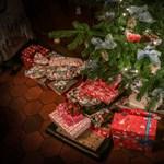 Ajándékok a fa alá: 10 000 gyerekkönyvet osztott ki a HVG
