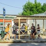 Beidézték a rendőrségre a felcsúti buszmegállót építő kutyapártosokat