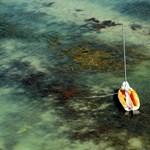 Gyönyörű légifotók a balatoni szárazságról  - Nagyítás-fotógaléria