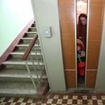 A lépcsőházi virágok veszélyeire hívja fel a figyelmet a Mentőszolgálat