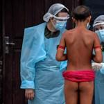 Egy nap alatt 44 ezer új fertőzöttet találtak Brazíliában
