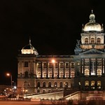 150 év után most találták meg a prágai Nemzeti Múzeum raktárában a legrégebbi növényfosszíliát