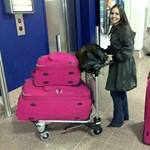 Fapados botrány: cipelje az utas a csomagjait