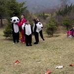 Dél-Korea enyhülést keres Észak-Koreával