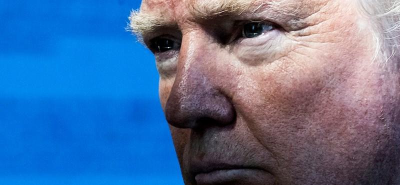 Trump és a Brexit miatt tarolnak a kanadai egyetemekek