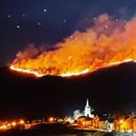 Pusztító tűz ütött ki egy észak-ír erdőben