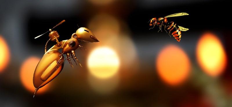 Hazakísérnek a sötét utcán, otthon belemásznak a táskánkba – ilyenek lehetnek a jövő drónjai