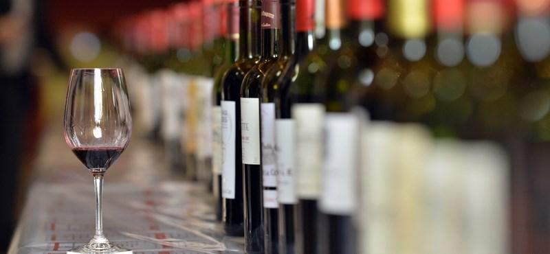 40 milliárdos ígéretet tett a kormány a borászoknak