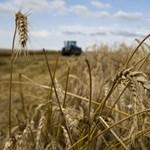 Elege lett a Greenpeace-nek, otthagyja az Agrárminisztérium bizottságát