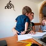 Soha nem látott szintre nőtt tavaly az otthonról dolgozók aránya