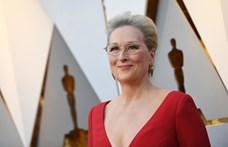 Sharon Stone szerint túlértékelik Meryl Streepet