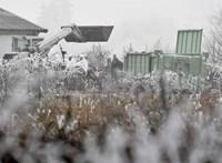 Közel 9,5 milliárd forint ment el a madárinfluenza miatti kártérítésekre idén
