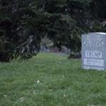 Valaki megásta Donald Trump sírját a Central Parkban