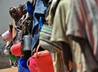ENSZ: akár 800 millió éhező is lehet a Földön