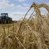 Alig van új mezőgépész, bajban a gazdaságok