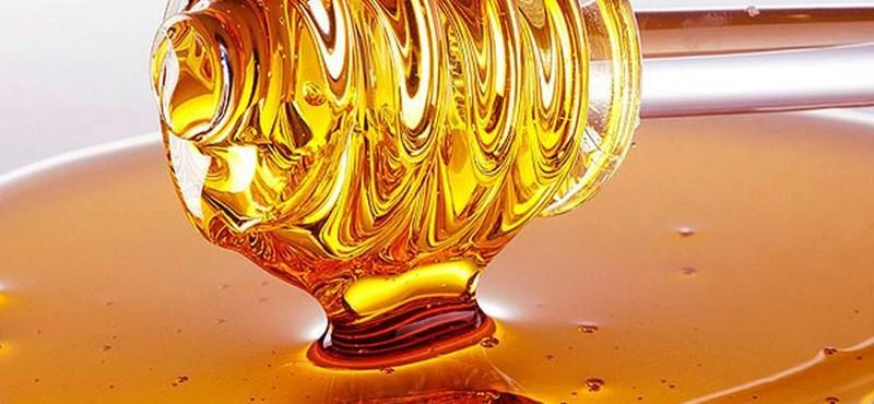 """Másfél milliót kérnek az """"elfek mézének"""" kilójáért"""