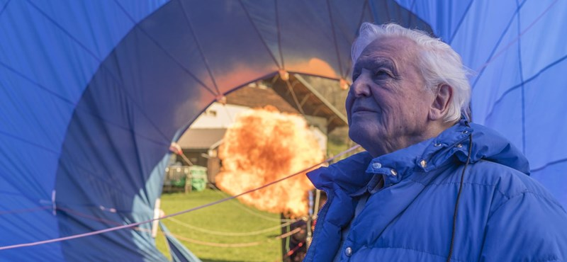 Sir David Attenborough is 95 years old in 95 seconds