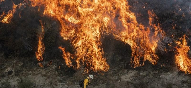 Tűzoltók adtak vissza egy gyűrűt, amely már két tűzvészt is túlélt