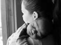 Dragomán György: Az anyai szeretet olyan fizikai erő, mint a gravitáció, csak még annál is erősebb