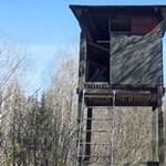 Két vadászt lőtt meg egy társuk a Bakonyban