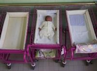 Néhány nap alatt több százezer forintot gyűjtöttek új mosógépre a Semmelweis Egyetem szülészetének