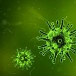 Emmi: A kórházak felkészültek a koronavírusra