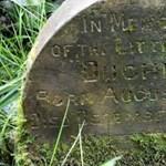 Az erdő közepén aprócska sírt talált egy fotós, rajta szívmelengető felirattal